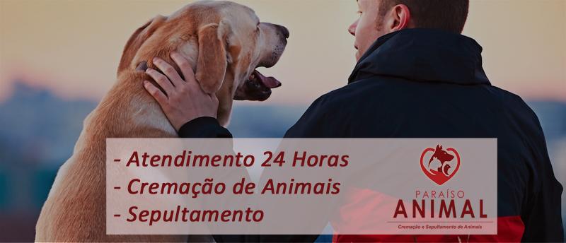 Paraíso Animal Cremação de Animais e Sepultamento de Animais